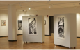 Art Gallery - NewzNext