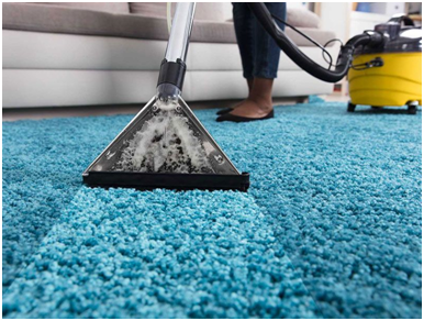 carpet cleaning - Newznext.com